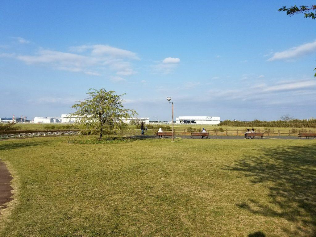 飛行機が見える公園