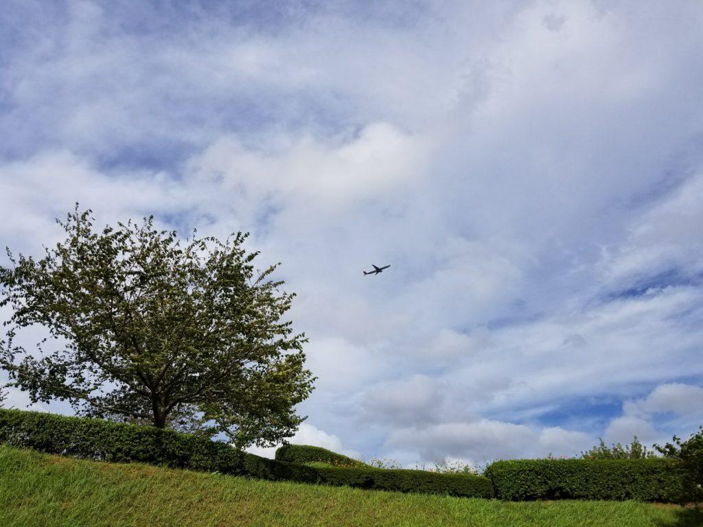 さくらの丘公園 飛行機