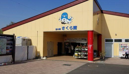 成田市の空の駅「さくら館」に行ってきた!アクセスや館内の情報も