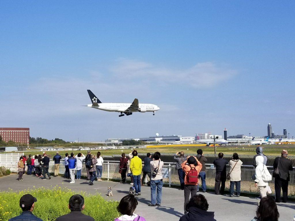 飛行機の見える公園